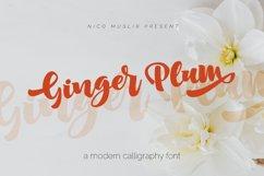 Ginger Plum Script Product Image 1