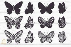 Butterflies SVG Bundle, butterfly PNG, butterflies svg Product Image 2