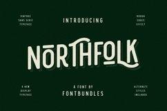 Web Font Nothfolk Product Image 1