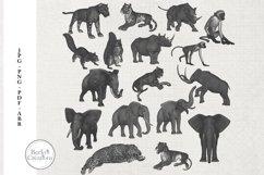 Animal Photoshop Brushes/Illustrations Product Image 1