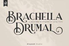 Brachella Drumal Product Image 1
