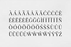 Arterio Font Family - Serif Product Image 3