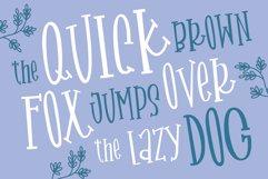MARDE GRASE a Stylish Serif Font Product Image 3