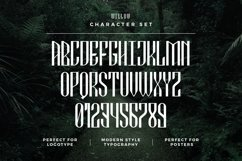 Web Font Willow Product Image 5