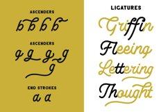 Lesley - Monoline Script Font Product Image 6