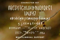 EndlessLove - Beauty Handletter Font Product Image 6