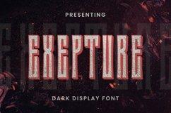 Web Font Exepture Product Image 1