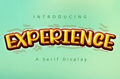 Experience | A Display Typeface Product Image 1
