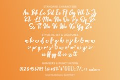Berthon - Brush Script Font Product Image 5