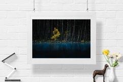 Yellow Tree - Wall Art - Digital Print Product Image 1
