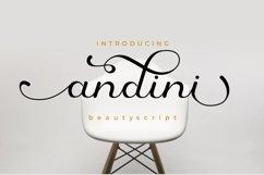 The Beauty Flourish Font Bundles - Only $12 Product Image 2