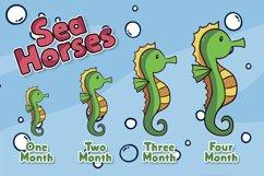 Sea Horses Product Image 4