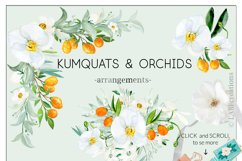 Kumquat & white orchids. Watercolors clipart collection. Product Image 5