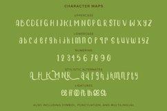 Harmonia | Playfull Handwritten Typeface Product Image 4