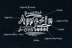 Agnezia - 5 Font styles and 150 Swashes Product Image 3