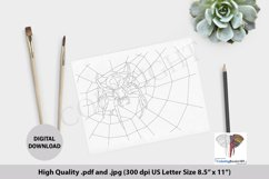 Spider Climbs on the Web Adult Coloring Page Product Image 1