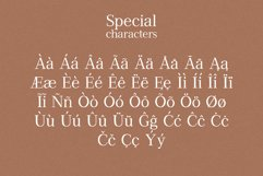Arenosa | textured serif font Product Image 6