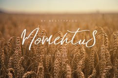 Momentus Product Image 1