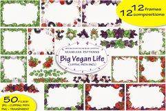 Big Vegan Life Product Image 2