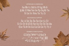 Jomei Font Product Image 5