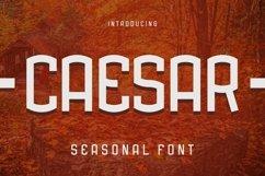 Web Font Caesar Seasonal Font Product Image 1