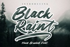 Black Raint Product Image 1
