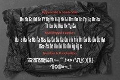 Web Font Serenade Font Product Image 4