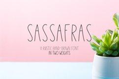 Sassafras Sans - Regular and Bold Product Image 1