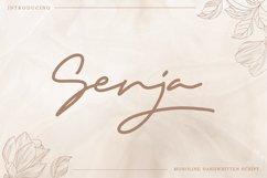 Senja - Monoline Handwritten Script Product Image 1