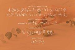 Web Font Maldiny - A Stylish Signature Font Product Image 3