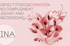 Fina Font Product Image 3