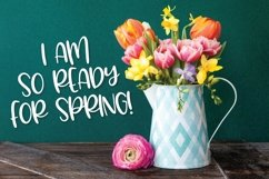 Web Font Spring Hopper - A Fun Hand Lettered Font! Product Image 5