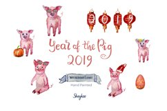 Year of the Pig Clipart, Chinese Year Watercolor Clipart Product Image 1