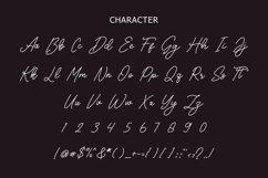 Kallima Modern Monoline Script Font Product Image 3