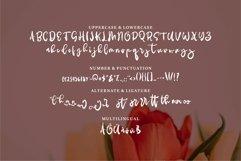 Sloriya - Brush & Beauty Font Product Image 2
