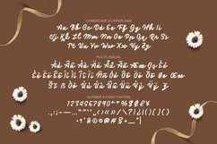 Web Font The Frosan Display Font Product Image 4