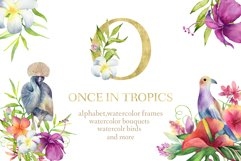ONCE IN TROPICS Product Image 1