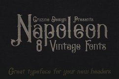 Napoleon Vintage Typeface Product Image 5