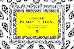 8 seamless paisley patterns Product Image 1