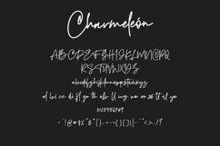 Charmeleon Script Typeface Product Image 4