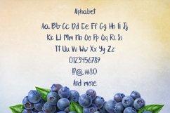 Blueberry Product Image 3