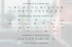 Harlesy Script Product Image 3