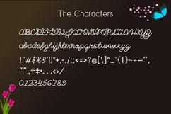 Marifessa Font - a handwritten script font Product Image 2