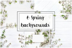 6 Spring Stock backgrounds in high resolution Product Image 1