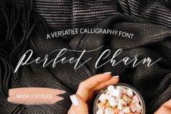 Web Font Perfect Charm - Elegant Font Script Product Image 1