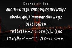 Alston - Handbrush Font Product Image 6