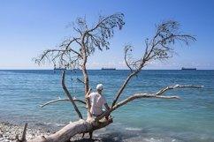 Picturesque summer landscape on a stone beach. 2pcs Product Image 2