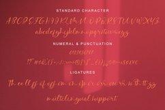 Malona - Modern Calligraphy Font Product Image 6