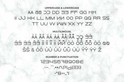 PORSCHEE Font Product Image 5