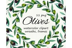 Watercolor olive branches, wreathes clipart, png files Product Image 1